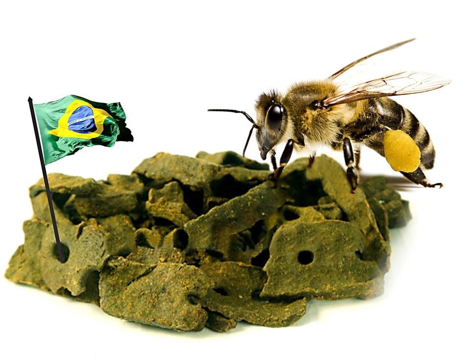 o-poder-da-propolis-verde-na-imunidade-saiba-tudo