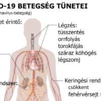 Symptoms_of_coronavirus_disease_2019_in_Hungarian