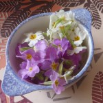 corinne fleurs 1