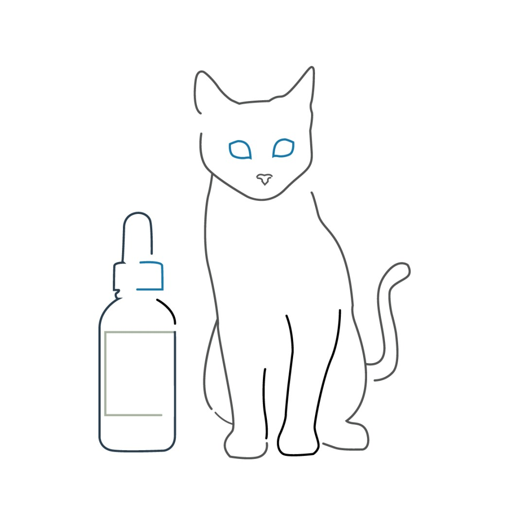 CBD Info - Vitality CBD Oil - CBD Oil Buffalo - Should i give my pets CBD oil?
