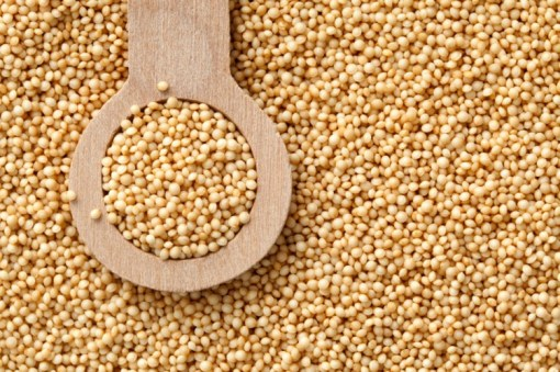Amaranth | seeds | microgreens