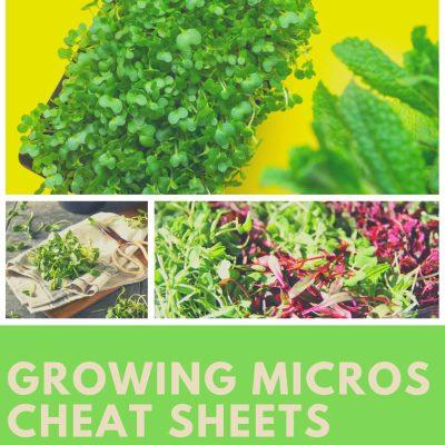 Microgreen growing cheat sheets