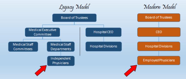 Medical Staff Models