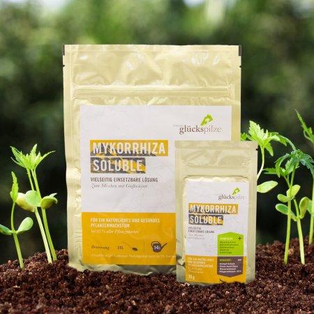 Mykorrhiza Soluble Pflanzendünger