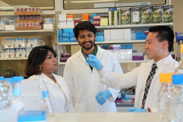 Mahua Choudhury, Ph.D., assistant professor at the Texas A&M Rangel College of Pharmacy, works with second-year professional student pharmacist Jason Chau and research assistant Yudisthar Singh Bedi, MS, on designing the contraceptive that will protect against HIV and other sexually transmitted disease.