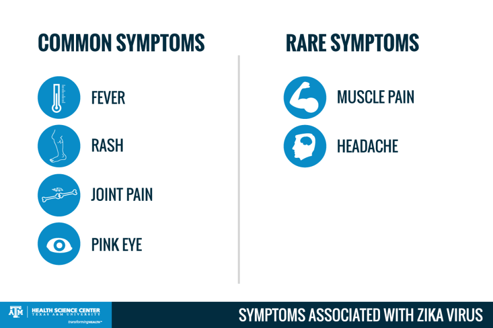 zika virus common symptoms