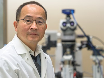 Picture of head researcher, Jun Wang, MD, in his laboratory