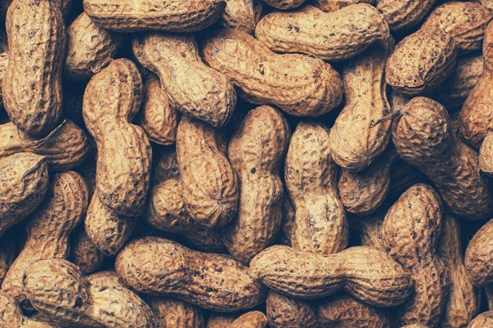 Food allergy: Signs and types. The image is a pile of peanuts.
