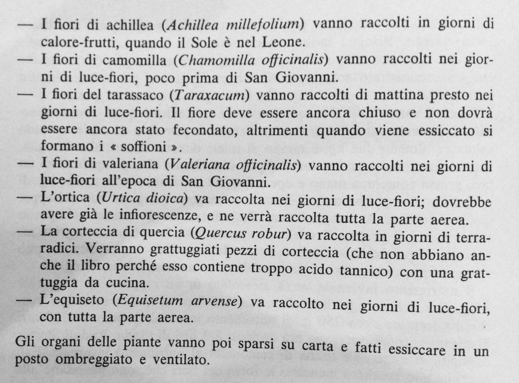 Estratto da Le Api di Rudolf Steiner