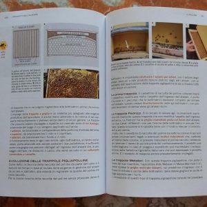Apicoltura tecnica e pratica di Alessandro Pistoia Libri di apicoltura (1)