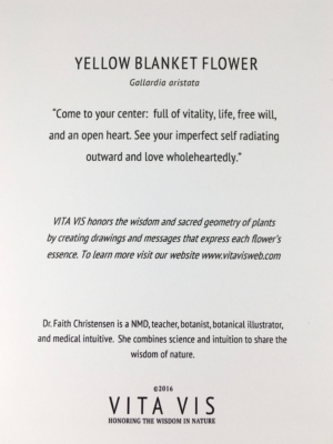 Yellow Blanket Flower Card Back