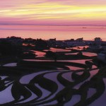 Awaji Island's beautiful terraced rice fields