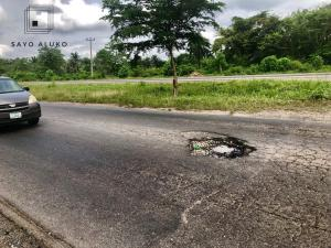 B5AC1FB8-FB76-4F4D-BFA6-954981D4BDB7-300x225 Ibadan-Ilesha road: Through the Valley of the Shadow of Holes | Sayo Aluko