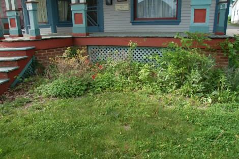 Garden for Blog02