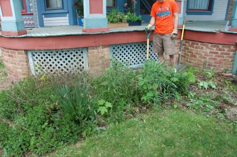 Garden for Blog15