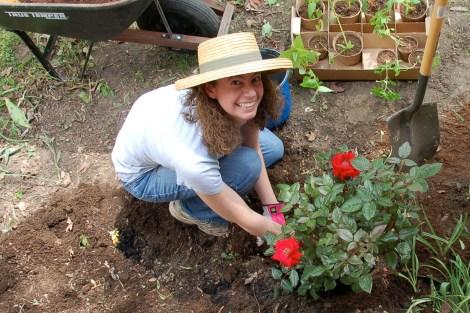 Garden for Blog16