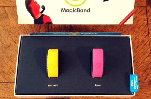 Magic Bands. Disney World. Vivacious Views.
