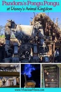 Pandora's Pongu Pongu at Disney's Animal Kingdom | Vivacious Views