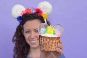 Spring at Disney World. Flower Crown Cupcake. Vivacious Views