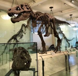 April Trip to New York City. T-Rex. Vivacious Views