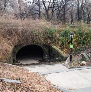 Central Park Faves. Arch(3). Vivacious Views