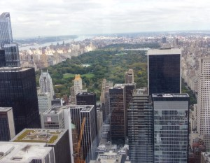 Top of the Rock. Central Park. Vivacious Views