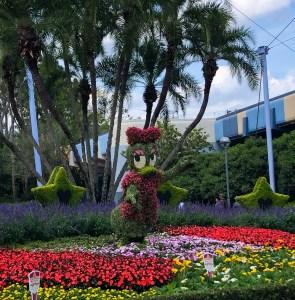 2019 Epcot Flower and Garden Festival. Daisy. Vivacious Views