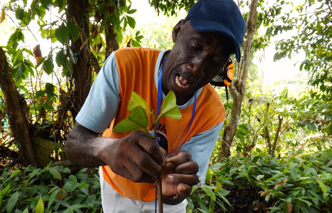 Los productores se muestran satisfechos por los conocimientos que reciben en pro de sus cultivos