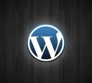 Wordpress para novatos