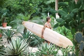 Seeking Surf