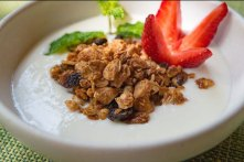 Homemade Yogurt and Granola