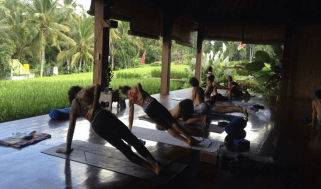 Stefanos Yoga Teacher Training in Bali
