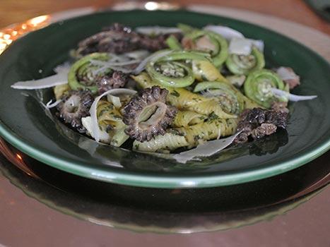 morel mushrooms fiddle head ferns