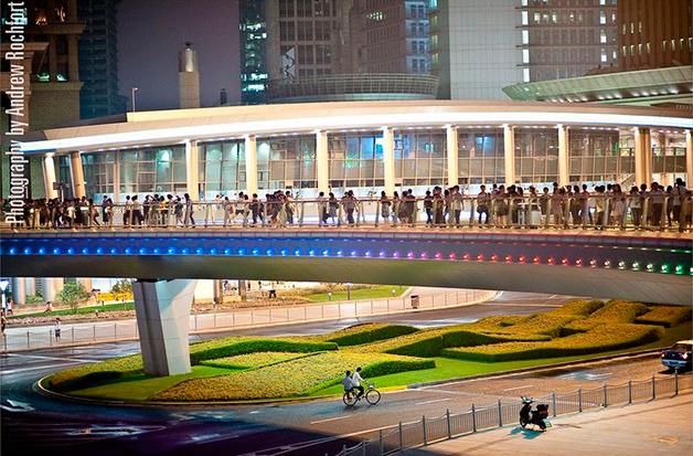 Shanghai8