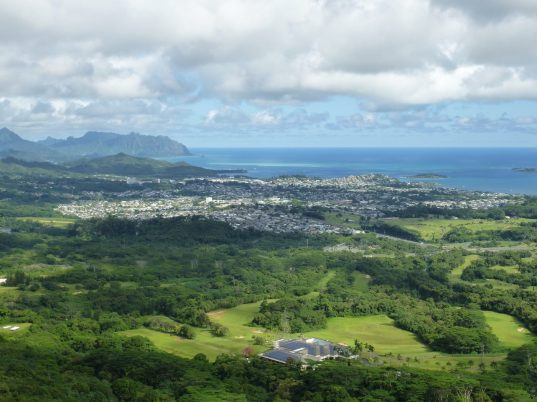View from Pali Lookout