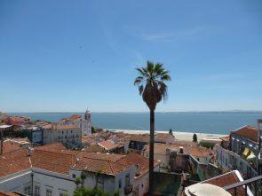 Viewpoint/Miradouro