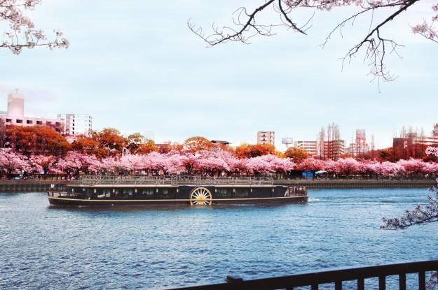 Sakuranomiya park, Osaka