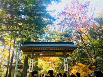autumn in mt. takao