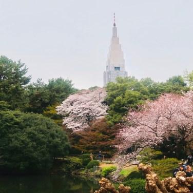 tokyo travel blog
