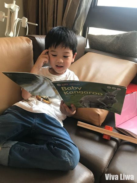 【書櫃】學齡前教育 幼兒教材 幼兒科普 New Baby Animals寶寶的第一套英語動物科普書 KidsRead點讀筆