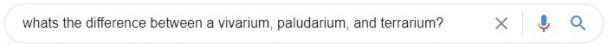 whats the difference between a vivarium paludarium, and terrarium