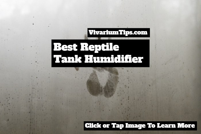 best reptile tank humidifiers