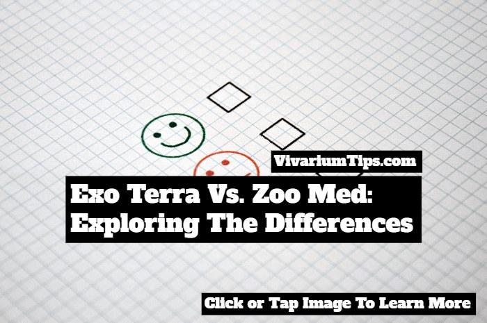 exo terra vs zoo med