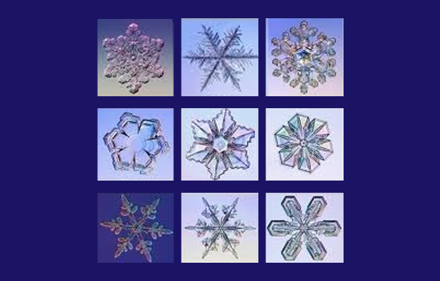 Snowflakes are a miracle of science.