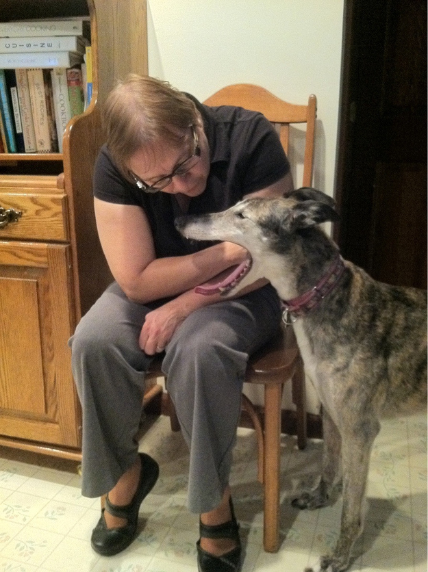 The perfectly timed dog-tonsil-check-up photo: