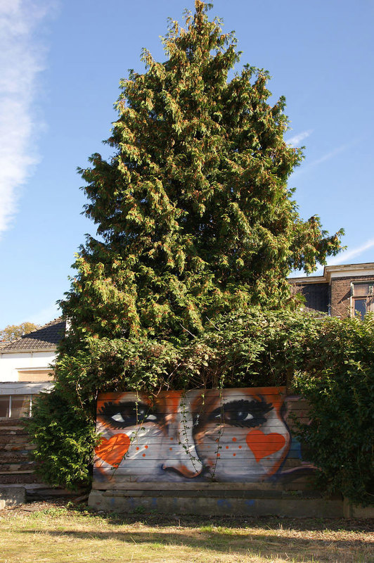 street art interacts with nature 22