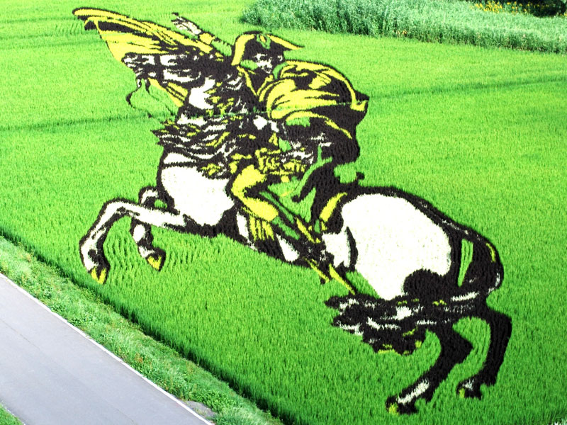 tanbo japanese rice field art (1)