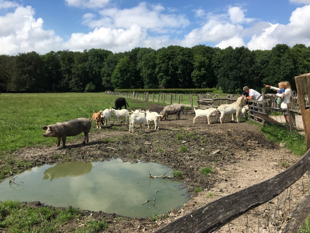 De Geitenboerderij, Amsterdamsebos