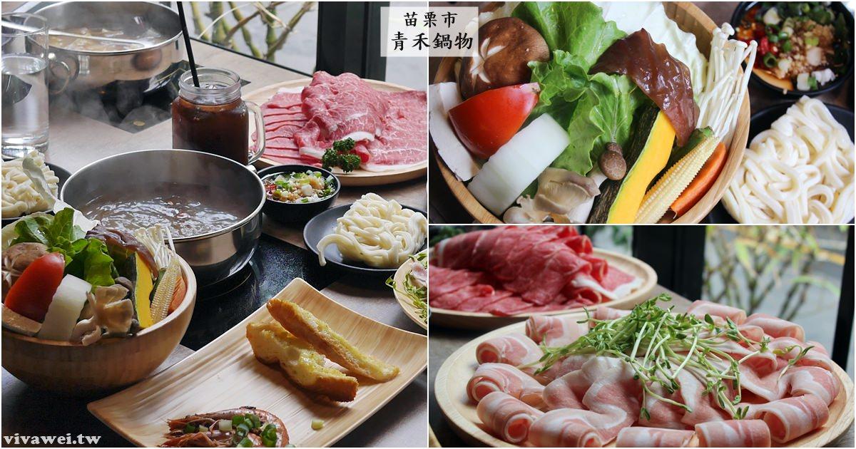 苗栗市美食|『青禾鍋物』前菜和甜點意外出色-2019起新增平日商業午餐時段!