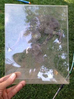 Stupid, plastic frame TRASH